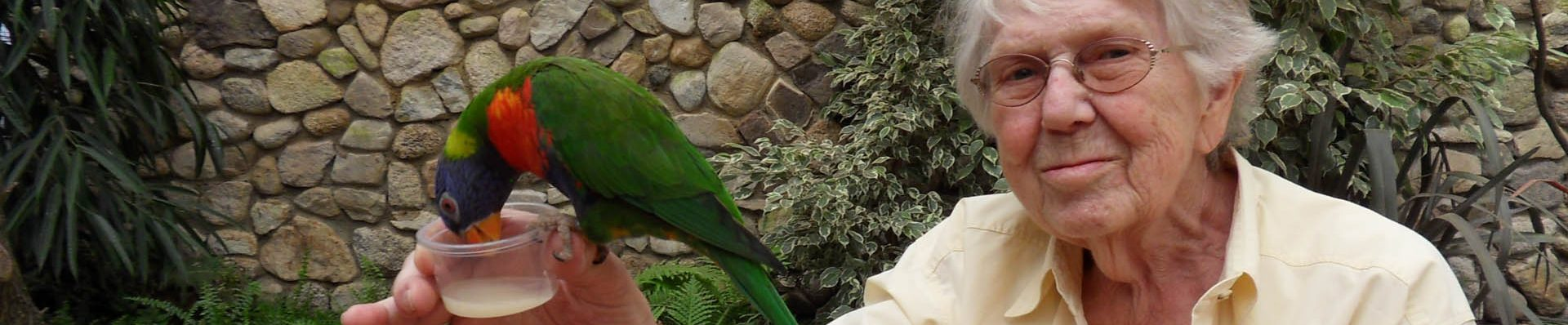 Kategorie: Weltvogelpark